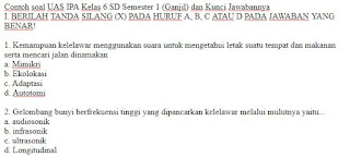 Contoh soal UAS Bahasa dan Sastra Cirebon Kelas 3 SD dan Kunci Jawabannya