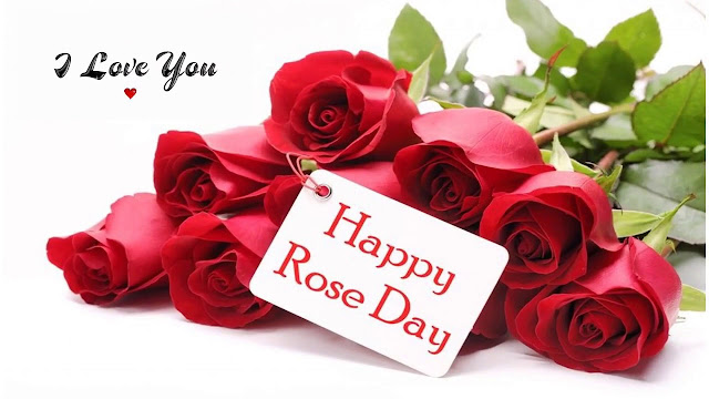 Happy Rose Day Videos for Girlfriend free download