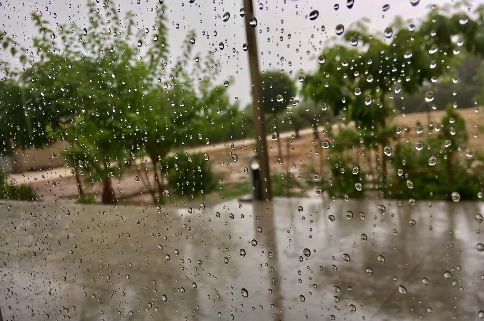 lluvia de verano (con permiso de Saul Leiter)