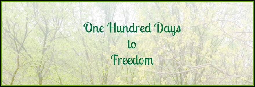 One Hundred Days to Freedom - Christian Weight Loss
