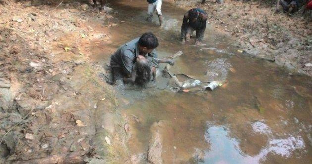 Keji! Bocah 4 Tahun Diperkosa Lalu Dikubur Hidup-hidup di Sungai Berlumpur Sorong