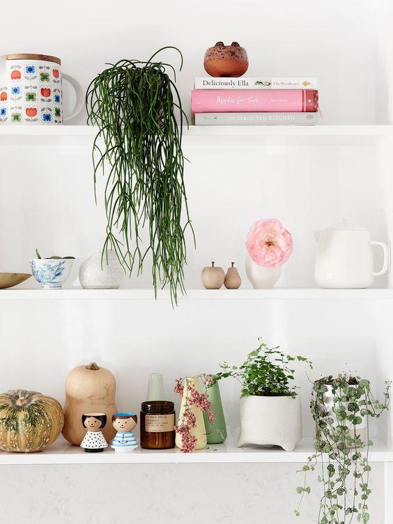 Shelfie Styling with Plants