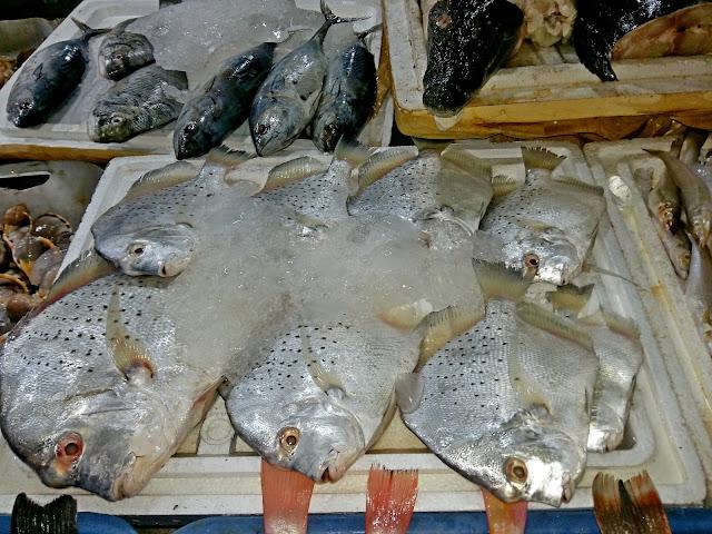 свежая рыба в Боке