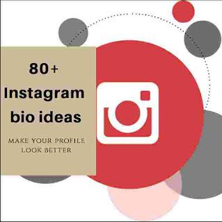 80+ Instagram bio ideas