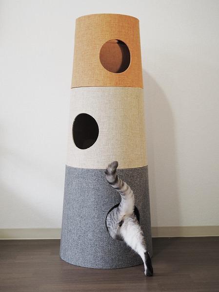 セットカーサの下段に入り込むサバトラ猫