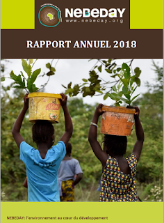 Rapport 2018 NEBEDAY