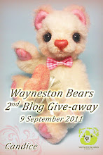 Wayneston Bears 2nd Blog Give-away!
