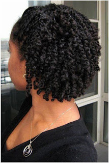 two strand twist braids