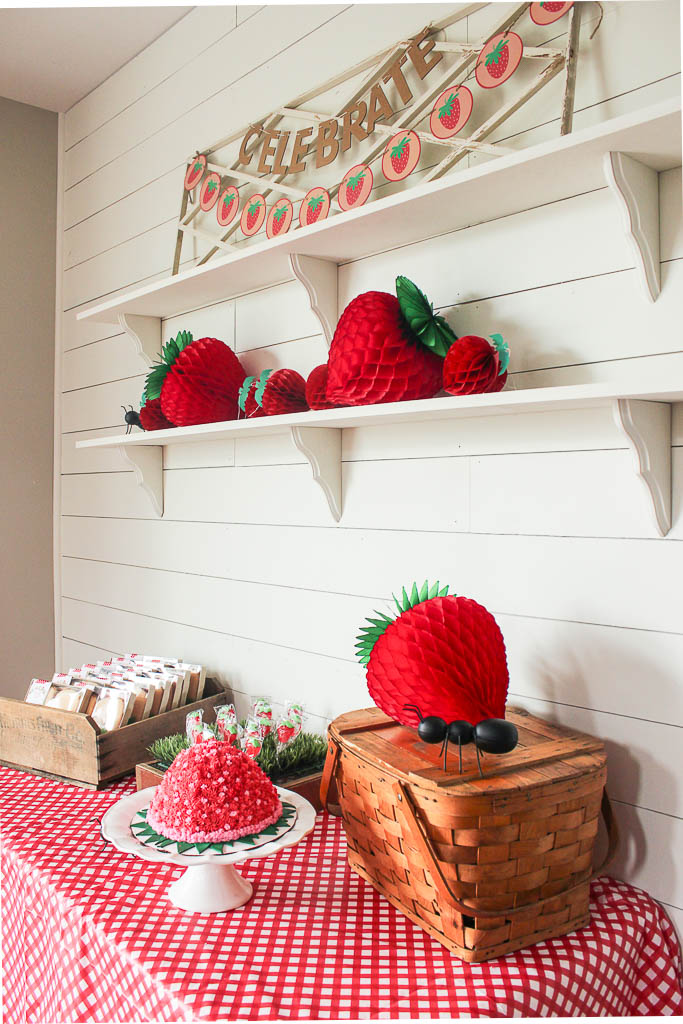strawberry picnic birthday decorations