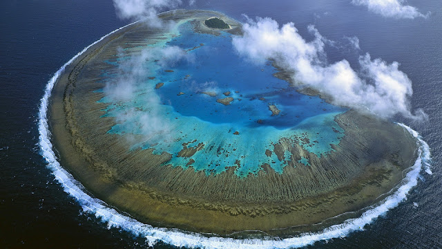 Corais de Recifes no Pacífico
