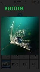 460 слов на цветок упали капли воды 20 уровень