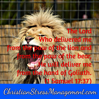 The Lord who delivered  me from the paw of the lion and from the paw of the bear, He will deliver me from the hand of Goliath 1 Samuel 17:37