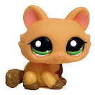Littlest Pet Shop Multi Pack Kitten (#1669) Pet