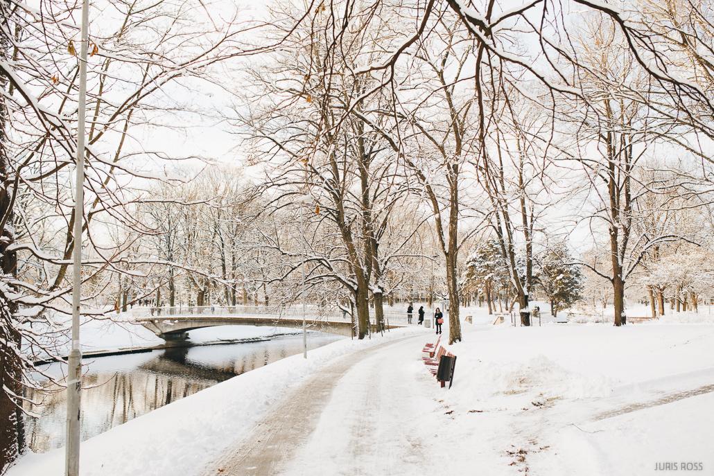 kronvalda parks ziemā