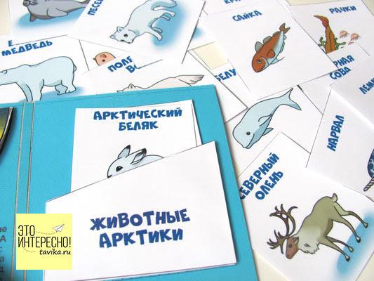 лэпбук Арктика и Северный полюс - тематическая папка своими руками