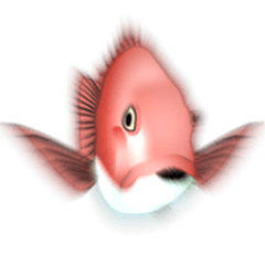 Fishing Animation Sticker 2