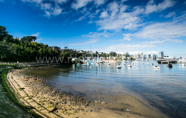 McMahons Point from Waverton Oval
