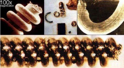 Resultado de imagen de objetos microscopicos del rio narada