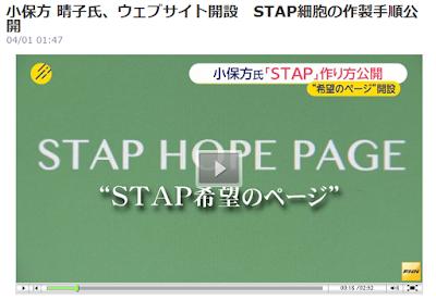小保方 晴子氏、ウェブサイト開設 STAP細胞の作製手順公開