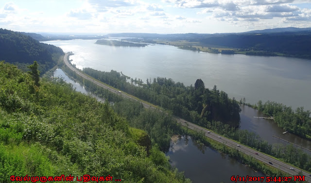 View from Crown Point looking over the Columbia River Gorge