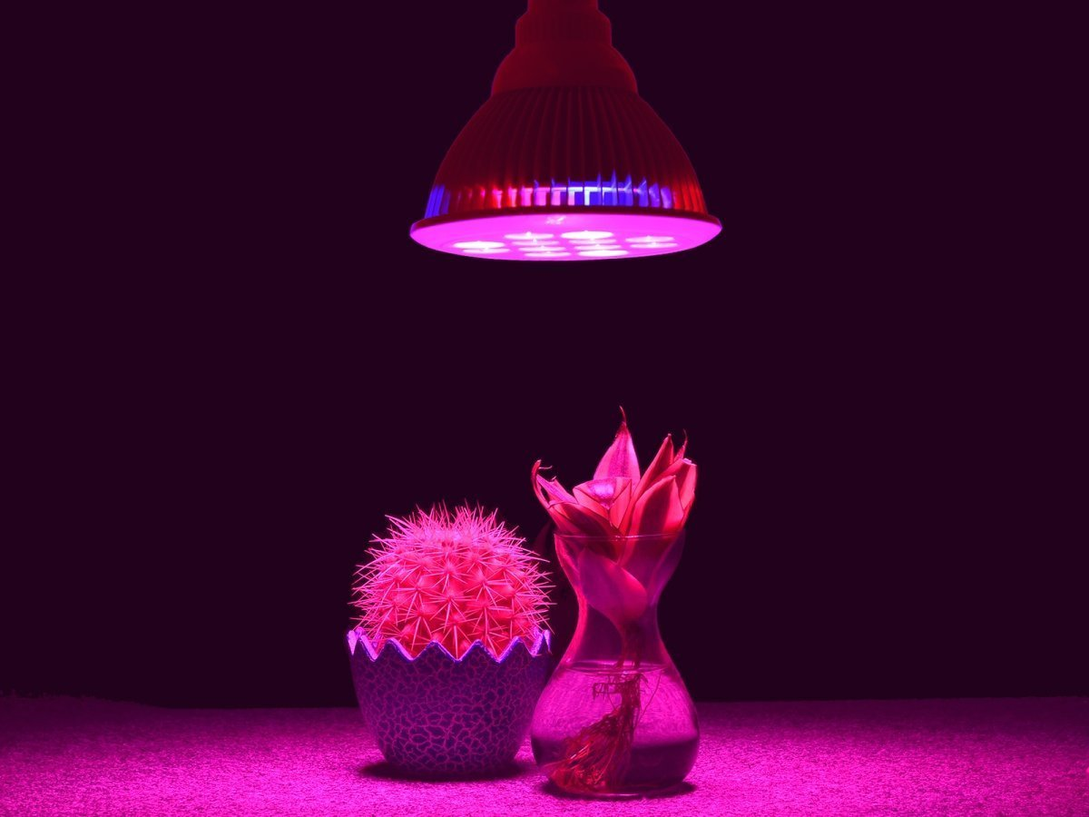 Taotronics tt gl lampada a led idroponica per piante la mia