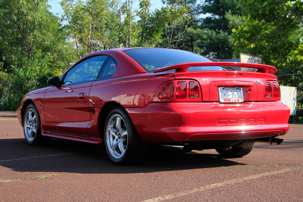 daily turismo 10k future gold 1998 ford mustang svt cobra low miles. Black Bedroom Furniture Sets. Home Design Ideas