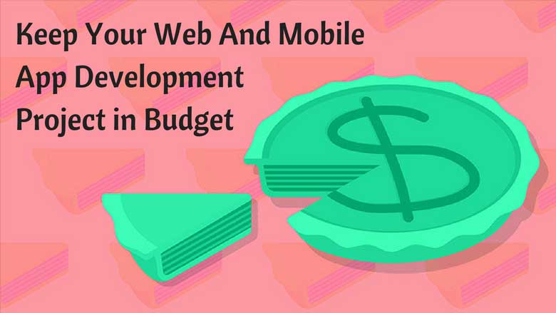 Web And Mobile App Development Project In Budget