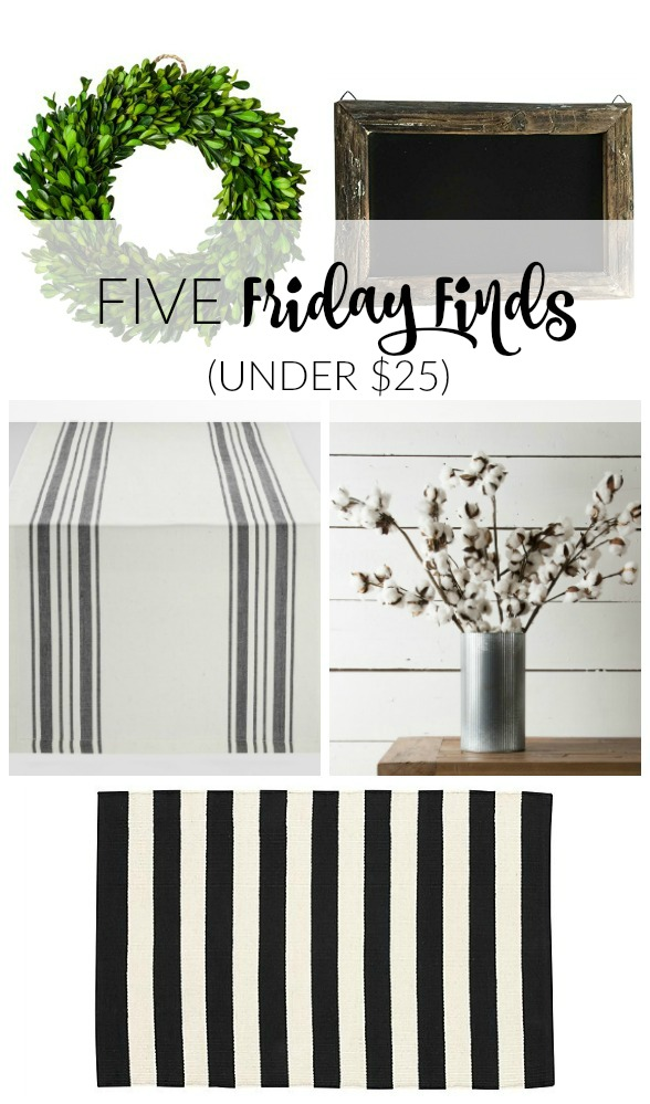 Five Friday Finds under $25!