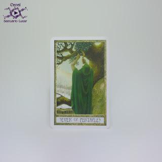 The Druid Craft Tarot - 7 of Pentacles