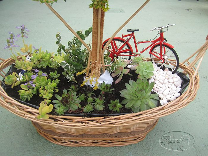 Manualidades puri diaz jardin en miniatura reciclando for Macetas miniatura