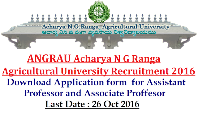 ANGRAU |Acharya N G Ranga Agricultural University jobs for Assistant Professor in Guntur. Last Date to apply: 26 Oct 2016|Download Application form for Assistant Professor and Associate Professor in ANGRAU Recruitment 2016/2016/09/angrau-acharya-n-g-ranga-agricultural-university-jobs-for-assistant-proffersor-associate-proffersor.html