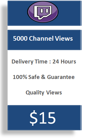 5000 twitch channel views