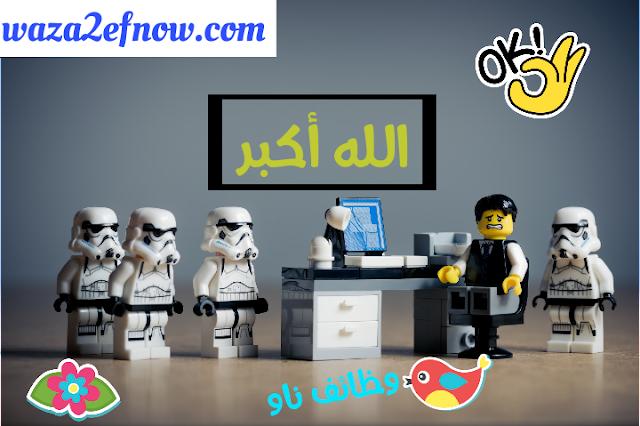 وظائف محاسبين في السعودية والإمارات | وظائف ناو