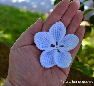 crochet plumeria flower in hand