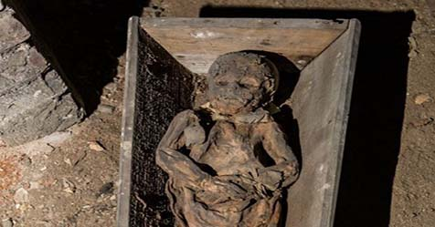 Lithuanian Mummy Reveals the Mystery of Virus Killer