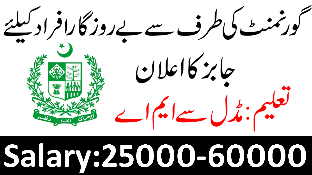 Balochistan Revenue Authority NTS Jobs Apply Now - Job collects