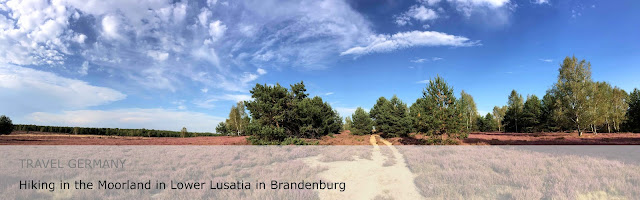 Travel Germany. Hiking in the moorland in Lower Lusatia in Brandenburg