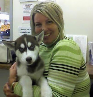 Bringing your new puppy or dog home. Things to consider when bringing your new dog or puppy home