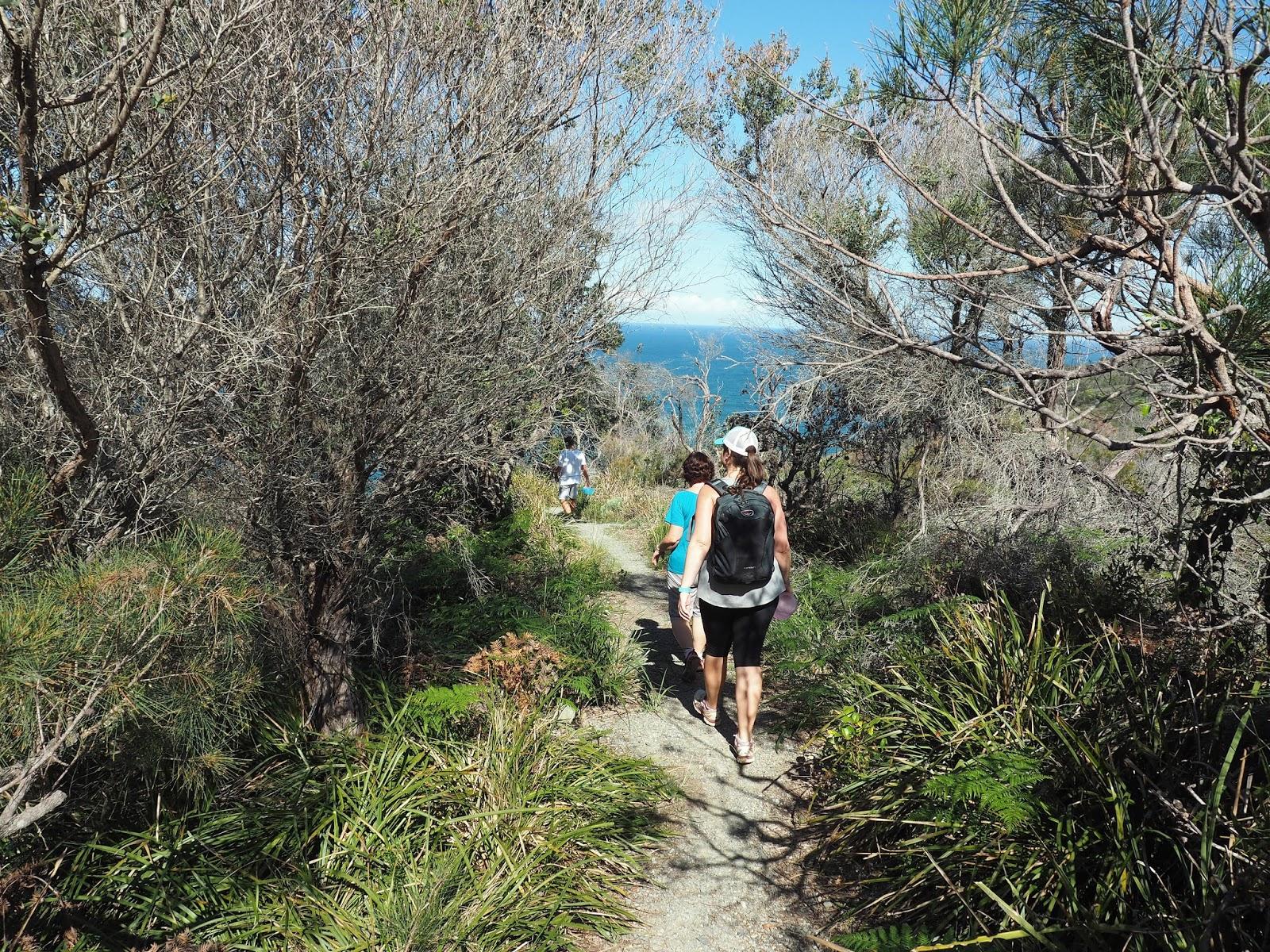 Walking through bush Diamond Head Loop Walk