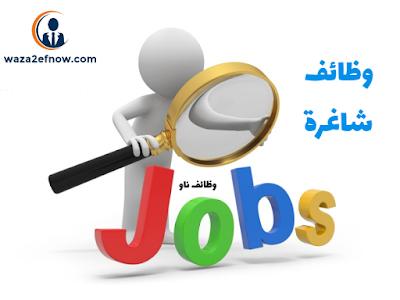 وظائف محاسبين في السعودية  2019 - خبرة وحديثي التخرج | وظائف ناو