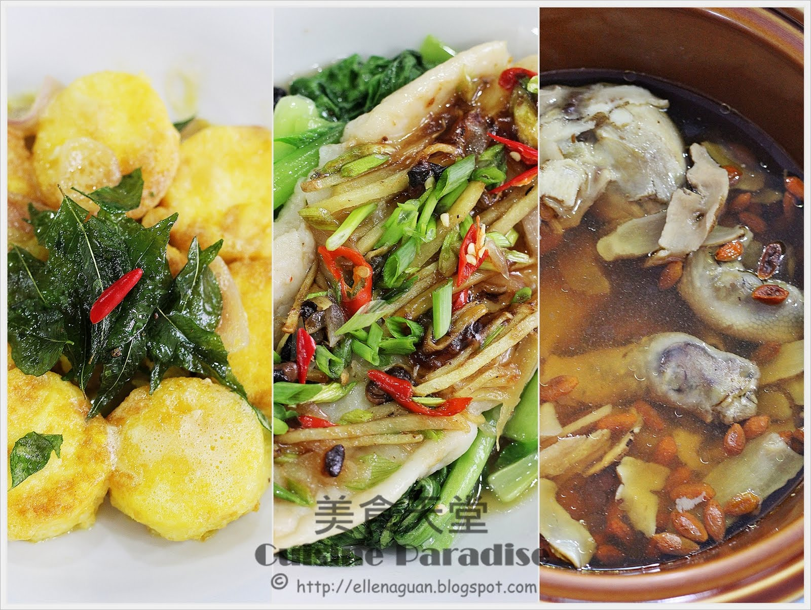 Blogspot Food Blog Cuisine Paradise Singapore Food Blog Recipes Reviews