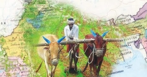 Essay : Role of Agriculture in Indian Economy