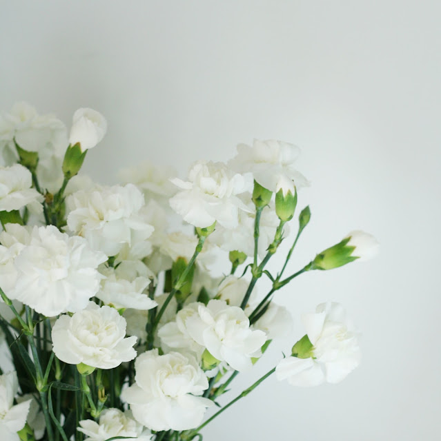 white carnation flowers in a case