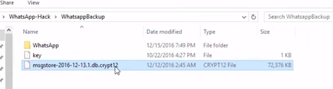 WhatsApp Ke Database Decrypt Kar Personal Data Ko Kaise Dekh?