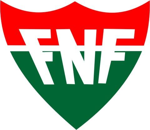 Resultado de imagem para FNF e abertura do Estadual 2017