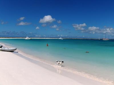 Playa de isla de coche