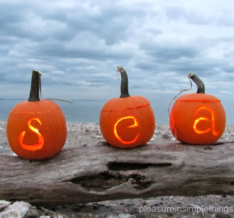 coastal sea Jack O Lanterns