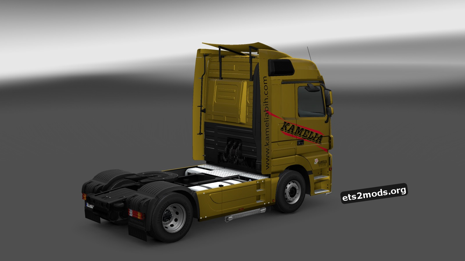 Kamelia Skin for Mercedes MP3