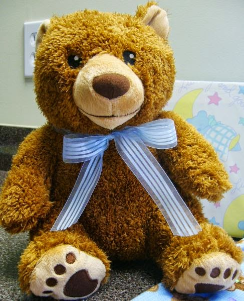 Kohls Cares Bear for OCC shoe box