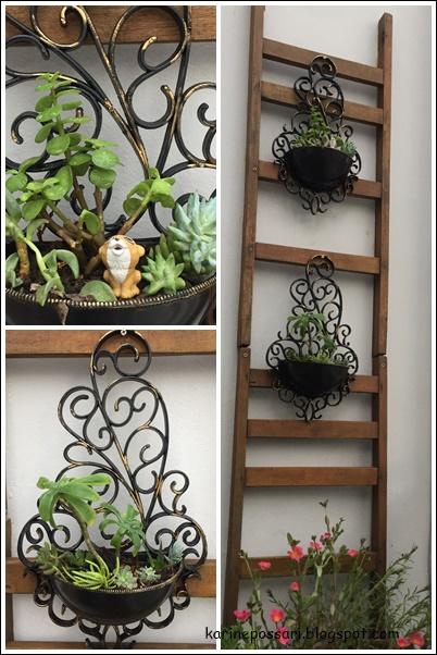 ante e depois jardim vertical